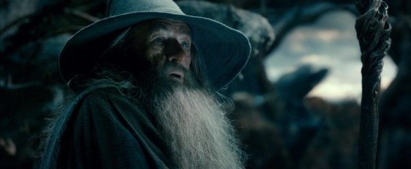 the-hobbit-desolation-of-smaug-ian-mckellan