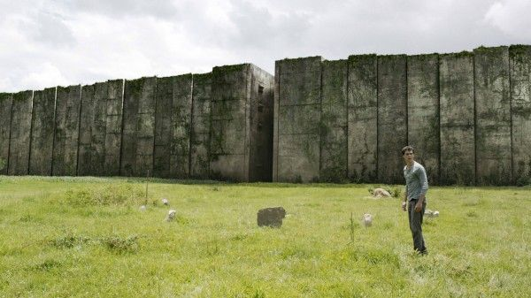 the-maze-runner-maze-image