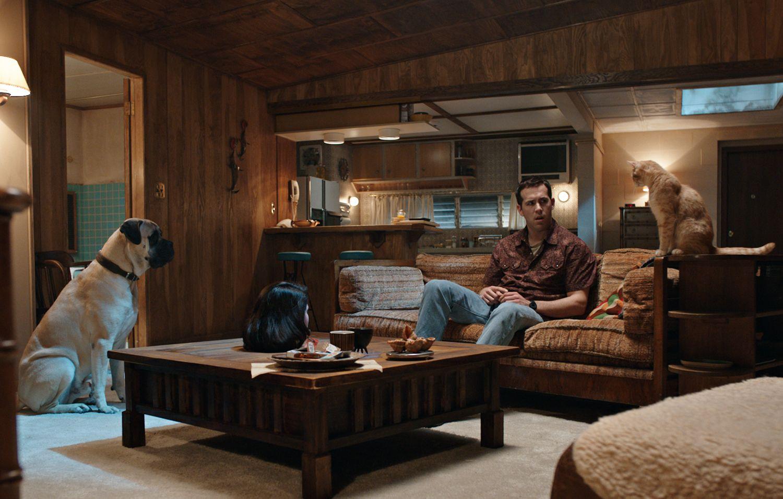 Dog Qnd Cat Talking Ryan Reynolds