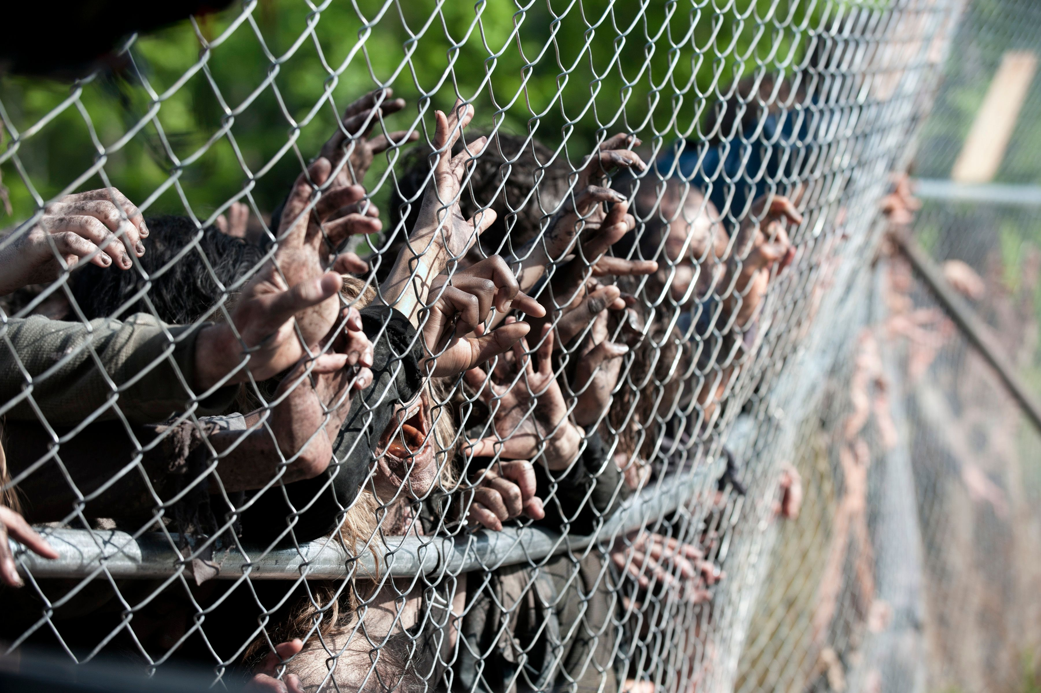 THE WALKING DEAD Season 4 Images | Collider