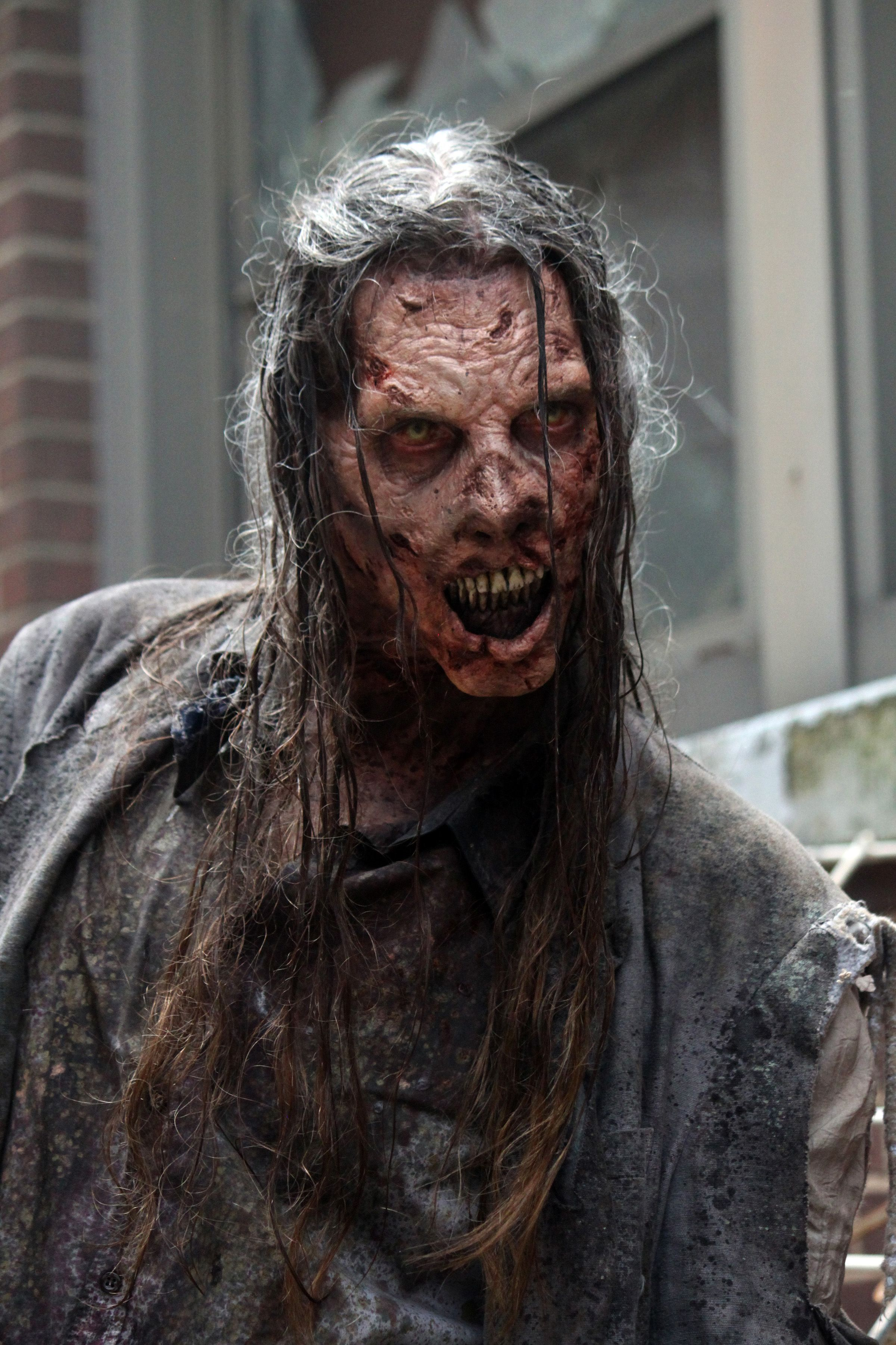 the walking dead season 5 teaser trailers and images | collider