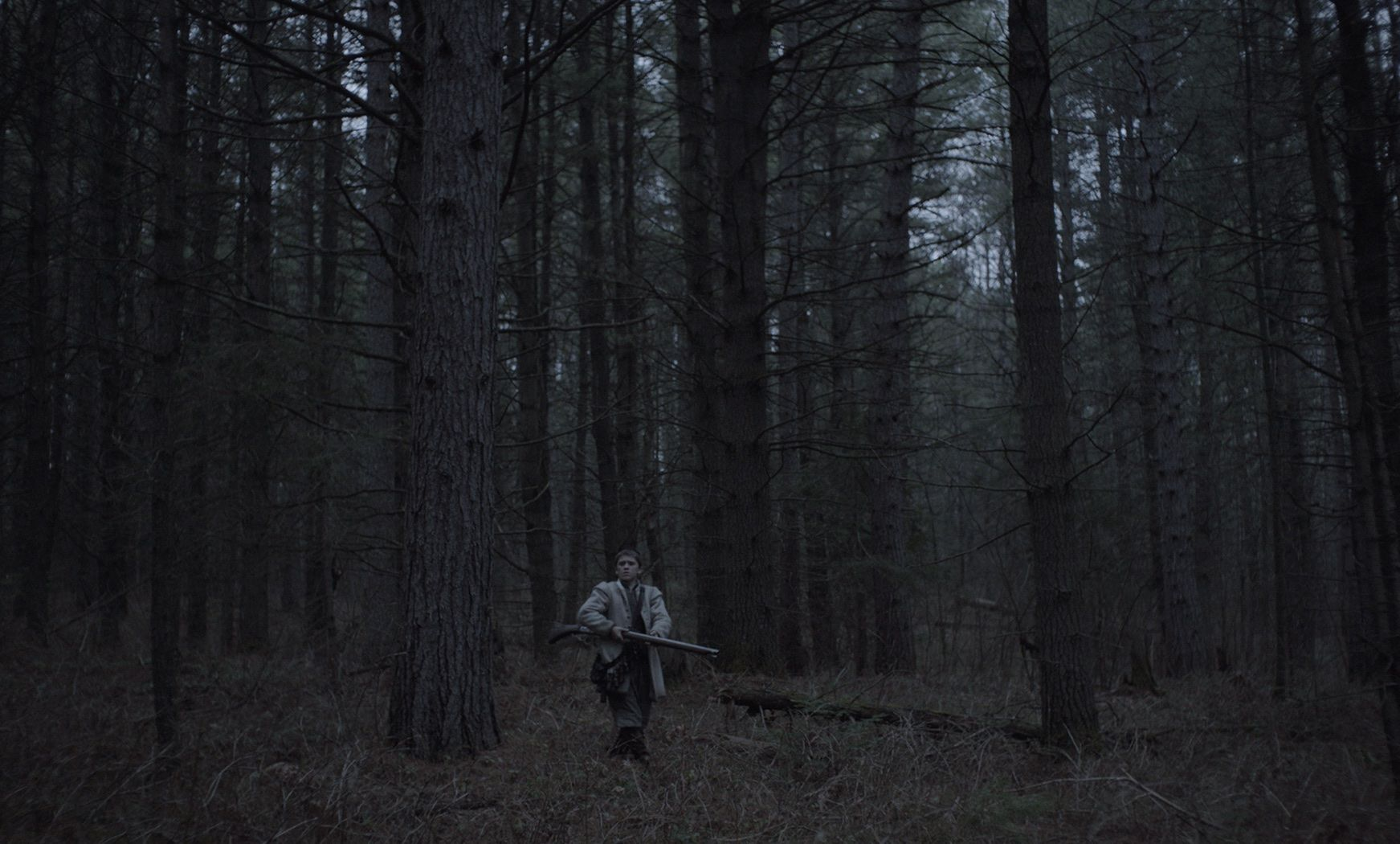 the witch In this exquisitely made and terrifying new horror film, the age-old concepts of witchcraft, black magic and possession are innovatively brought together to tell the intimate and riveting story of.