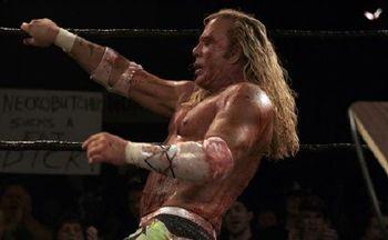 the-wrestler-image