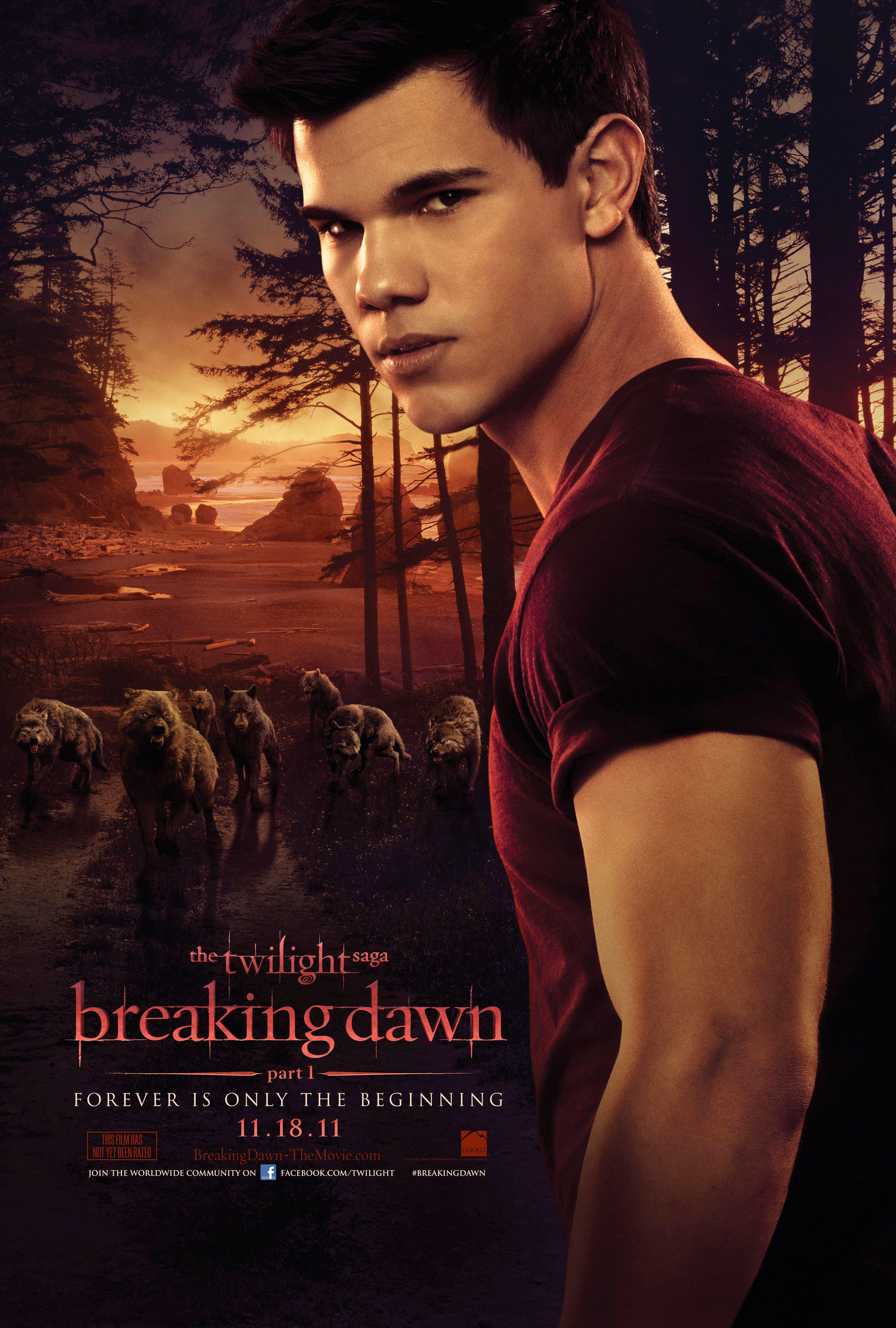 Breaking Dawn (The Twilight Saga, Book 4), Stephenie Meyer, 9780316067935, Book,
