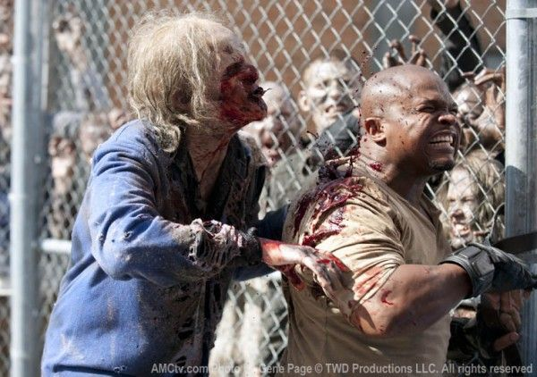 walking-dead-irone-singleton