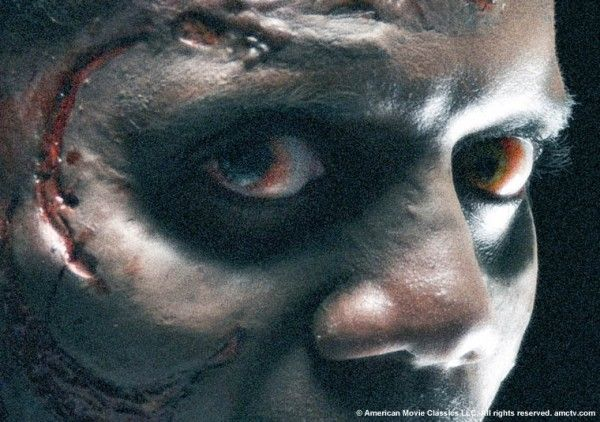 walking_dead_amc_tv_walker_zombie_image_05