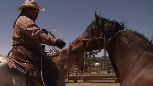 wild-horse-wild-ride-image-3