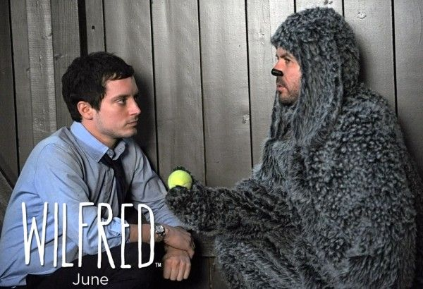 wilfred-image