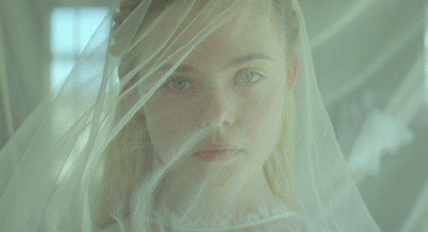 young-ones-elle-fanning-2
